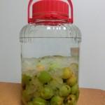 梅シロップ作り方で梅を冷凍する?はちみつを使うと?酢を入れると?