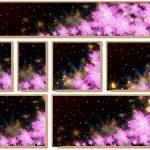 夜桜の写真の撮り方は?綺麗に撮るコツは?(デジカメ、一眼、スマホ)