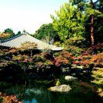 醍醐寺の紅葉の見ごろ時期は?ライトアップも幻想的でおすすめ!