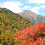 八ヶ岳の紅葉時期の登山!おすすめ紅葉スポットは?見ごろはいつ?