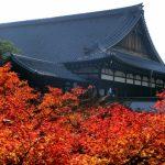 東福寺の紅葉、見ごろの時期はいつから?ライトアップは?混雑状況は?